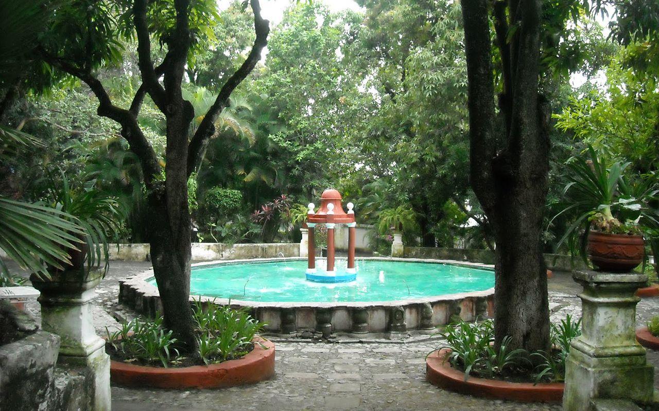 Jard n borda flor de mayo for Jardin cultural uabc 2015